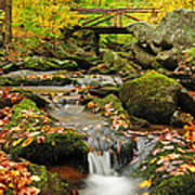 Foot Bridge- Macedonia Brook State Park Poster by Thomas Schoeller
