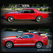 Ford Mustang Old Or New Poster