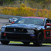 Ford Racing 59 Boss 302 Mustang Poster