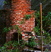 Forest Chimney Poster