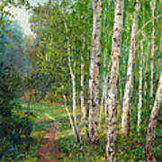 Russian Forest Footpath Poster