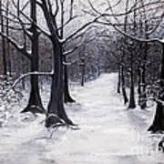 Forest Path In Winter Poster