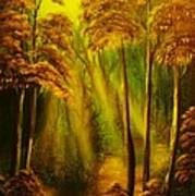 Forest Sunrays- Original Sold -buy Giclee Print Nr 38 Of Limited Edition Of 40 Prints  Poster