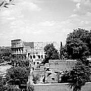 Forum Romanum Rome Italy Poster