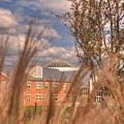 Founders Hall Through The Grasses Poster