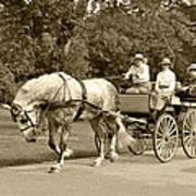 Four Wheel Cart Family Poster by Wayne Sheeler