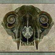 Foxbone Vi Poster