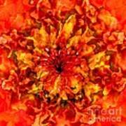 Fractal Chrysanthemum Poster