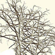 Fractal Ghost Tree - Inverted Poster