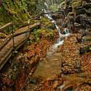 Franconia Notch Lush Greens And Rushing Waters Poster