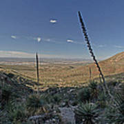 Franklin Mountains Landscape 4 Poster