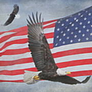 Freedom Flight Poster by Angie Vogel