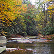French Broad River In Fall Poster