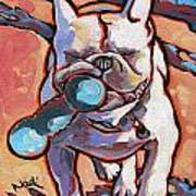French Bulldog And Toy Poster
