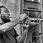 French Quarter Street Musician Poster
