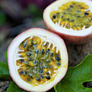 Fresh Cut Lilikoi Fruit Poster