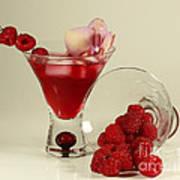 Fresh Raspberry Cosmos Delight Poster