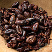 Fresh Roasted Cocoa Beans - Nibs Poster