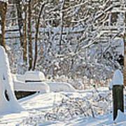 Fresh Snowfall  Poster