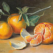 Fresh Tangerine Slices Poster by Theresa Shelton