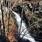 Fresh Water Streams Around Poconos Pa America Usa  Poster