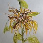 Friendly Sunflower Poster