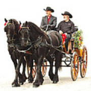 Friesian Carriage Poster