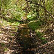 Frijole Creek Bandelier National Monument Poster
