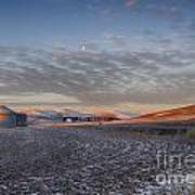 Frosted Palouse Poster