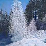 Frosty Trees Poster