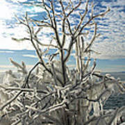 Frozen Backlight Poster