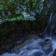 Frozen Garden Stream Poster