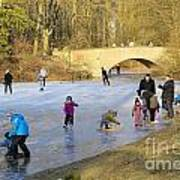 Frozen Lake Krefeld Germany Poster by David Davies