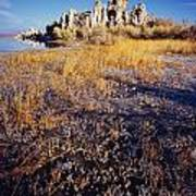 Frozen Marsh And Tufa Poster