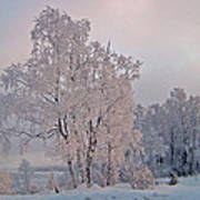 Frozen Moment Poster