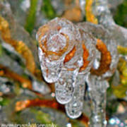 Frozen Spiral Poster