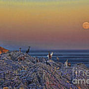 Full Moon Gathering Of Capricorn Poster