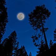 Full Moon In Yosemite Poster