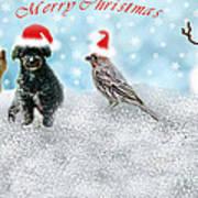 Fun Merry Christmas Card Poster