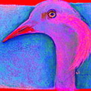Funky Demoiselle Crane Bird Art Prints Poster