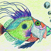 Funky Fish Art - By Sharon Cummings Poster