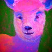 Funky Pinky Lamb Art Print Poster
