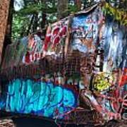 Gaffiti In The Candian Forest Poster