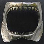 Gaint Shark Jaw Sculpture Poster by Stuart Peterman