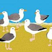 Gang Of Gulls On The Beach Poster