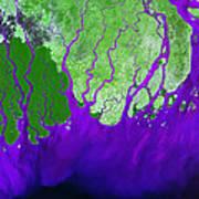 Ganges River Delta Poster