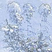Garden Blue Poster by Diana  Tyson