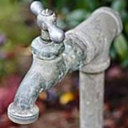 Garden Faucet Poster by Cathie Tyler