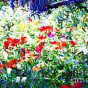 Garden Impressionism Poster