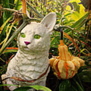 Garden Kitty In The Fall Poster